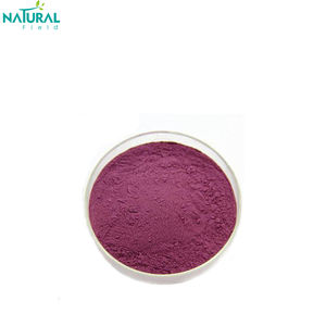 Powder Form and Bilberry Extract 10:1 bilberry extract powder in stock