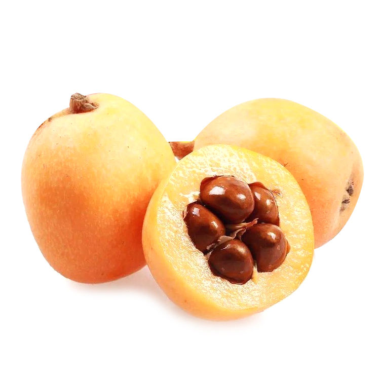 High Quality Loquat Fresh Loquat Fruit For Sell Delicious Loquat