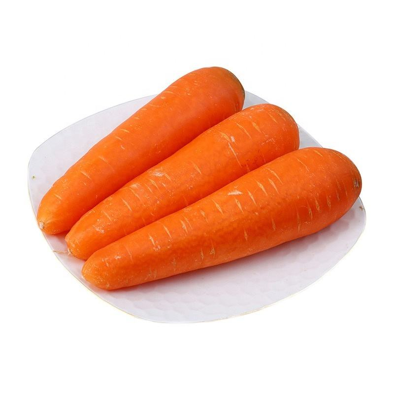 China wholesale price vitamin sweet carrot vegetable fresh carrot