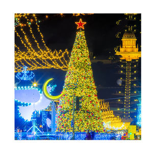 10ft 20ft 30ft yellow large outdoor led lighting Christmas tree with stand and led lights top star