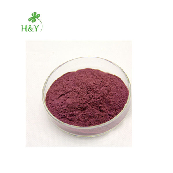 Free Shipping Enhance Immune Mulberry Extract Mulberry Powder In Bulk