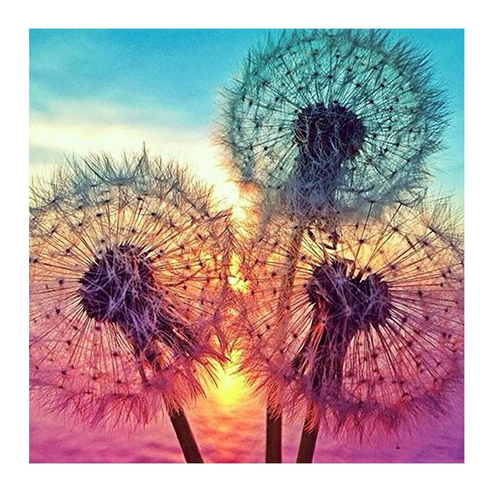 Sunset Dandelions Art Photo Drill Embroidery Cross Stitch for Home Decoration GIFT DIY 5D Full Diamond Painting