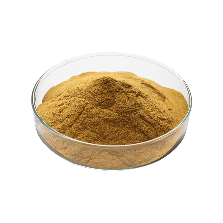 Passiflora Incarnata Extract Powder Purple Passionflower Fruit Extract
