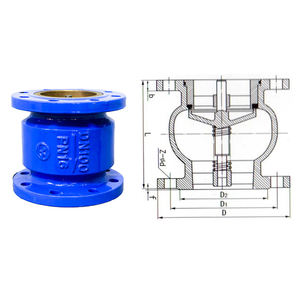 PN16 DIN Flanged End Double flange Spring Check Valve 3 Way