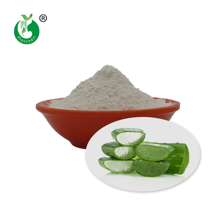 Top Quality Freeze Dried 100:1 Aloe Vera Gel Powder