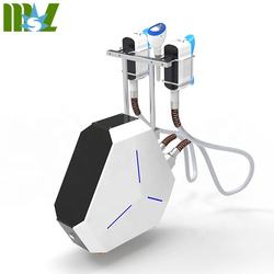 Zsculptor 360 degree cryolipolysis machine fat freezing machine MSLCY18