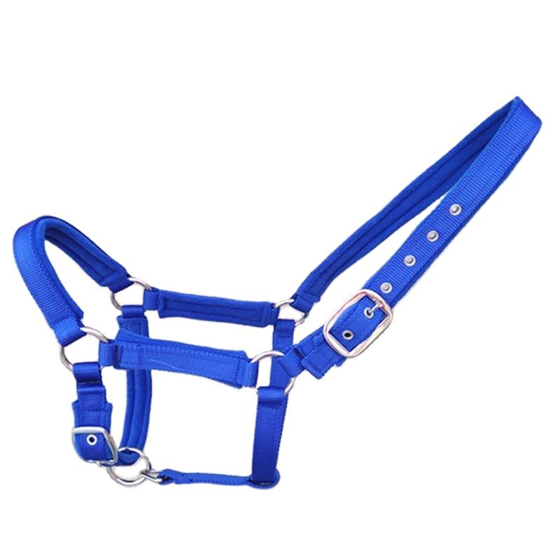 Red Horse Racing Halters Horses Equestrian Products Manufacture
