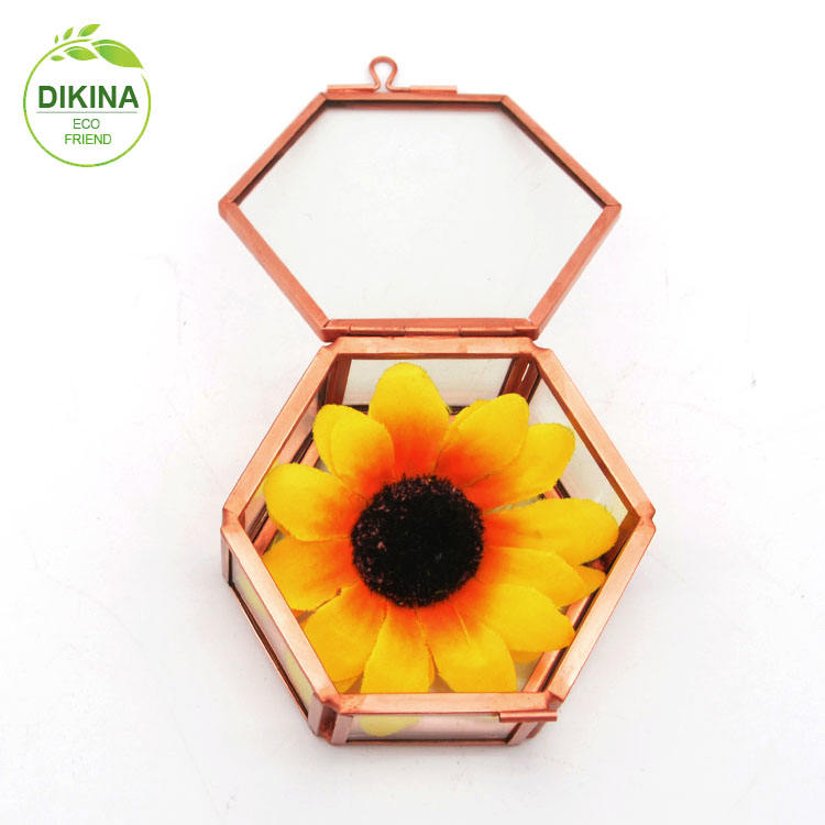 Hexagon Vintage Glass casket Geometric wedding Display ring earring jewelry box