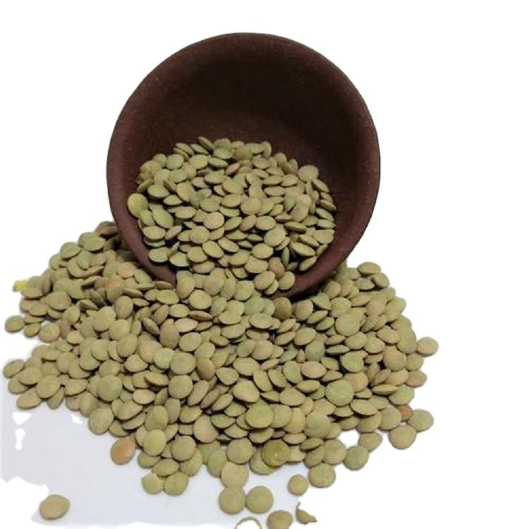 Hot sell wholesale price of Chinese Lentil husk