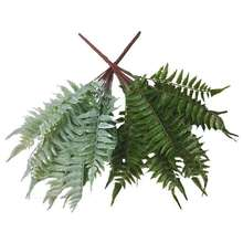 Wholesale Artificial Green plant fern plant wall material fern grass engineering filter decoration persian fern white green