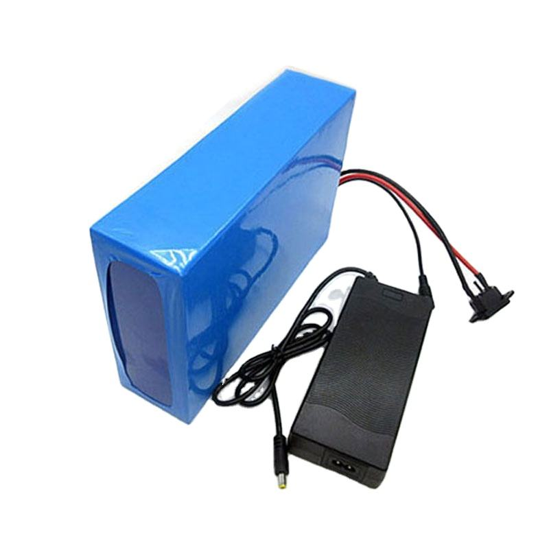 1500W Rechargeable Electric E Bike Li-ion 48V 20Ah Lithium Ion Battery Pack 48V For Ebike Golf Cart AGV Robot Scooter