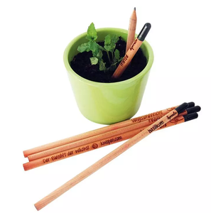 Eco friendly plantable seed pencil plant with seed plantable pencil