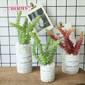 Indoor Hotel Decoration Faux Natural Truth Succulent Plants for Sale