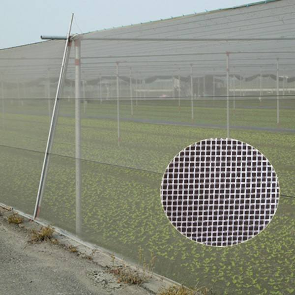 Hot-promotion anti insect net mesh & PE agriculture mesh & anti-insect net for agriculture
