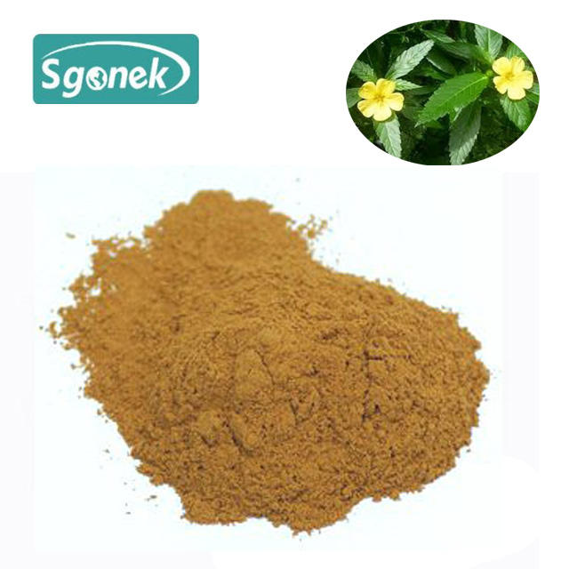 Natural sexual powder Damiana extract leaf bulk powder supplement 4:1 mexican damiana