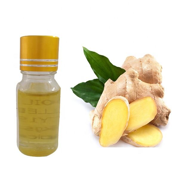 Professional Manufacturer Supply Pure Natural Ginger Oil ginger essential oil