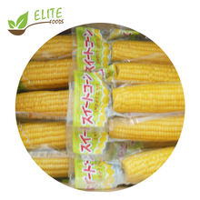 2020 new season sweet corn on the cob in vacuum packed