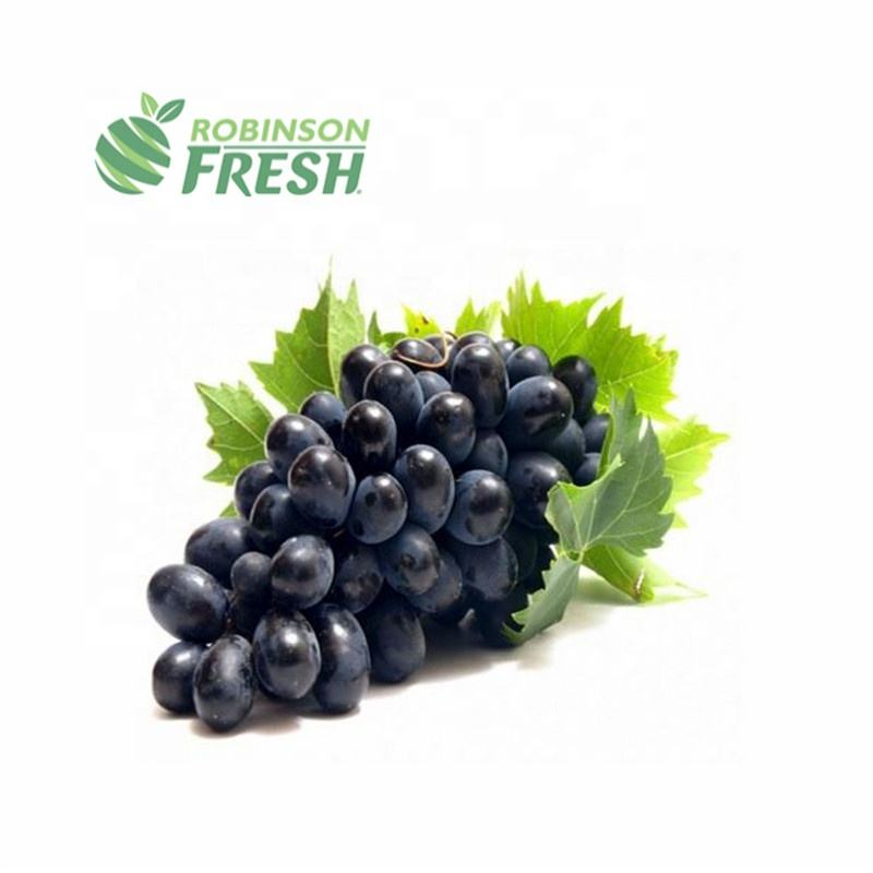 Chile Grown Black Grapes Seedless Robinson Fresh MOQ 18 Lbs Quick Delivery in US
