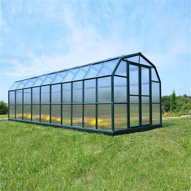 Skyplant Factory Price High Quality PC Polycarbonate Covered Outdoor Green Houses/Garden Greenhouse