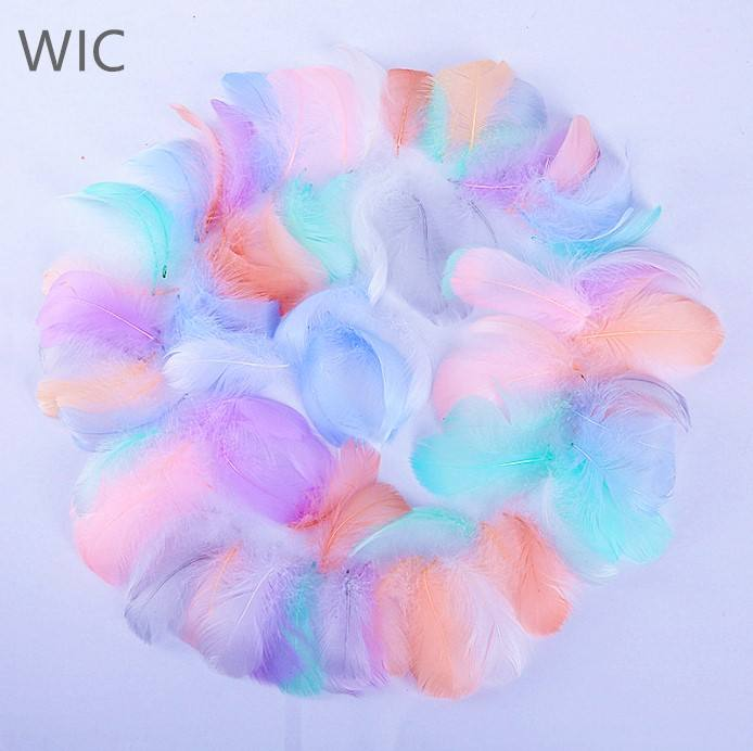 China Factory Price Dyed/White Goose Down Feathers for Decoration