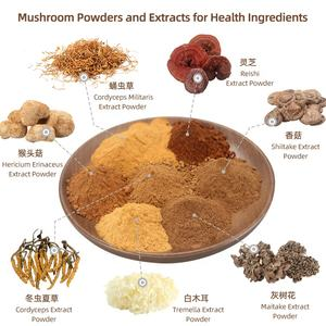 Organic Pure Nature Ophiocordyceps Dong Chong Xia Cao Mushroom Cordyceps sinensis Extract Powder for Health Ingredients