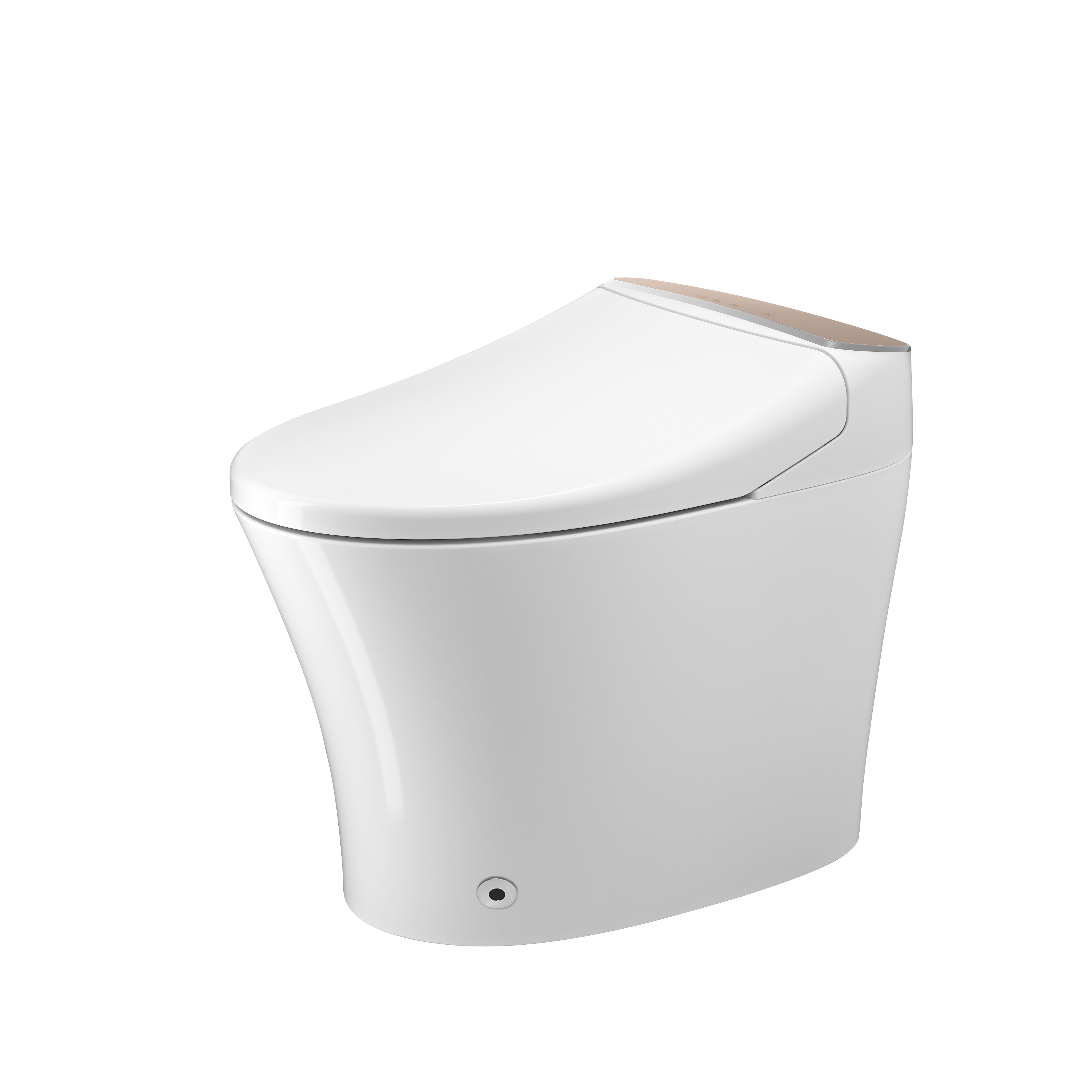China Dual Nozzle Luxury Hot Sale Electric Siphonic Toilet