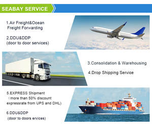 Professional China Shipping Agent Ship Sea Freight Forwarder To New Zealand