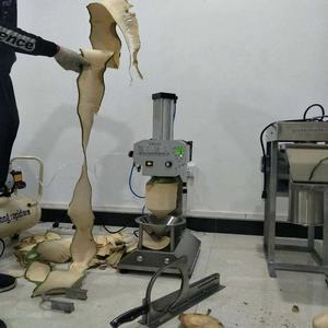 industrial full automatic coconut peeling machine/pineapple peeler(coring&slicing)
