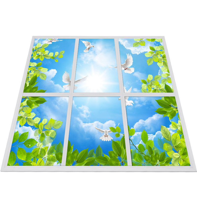 Flicker-free Sky Panel Light 40W 600x600mm Artificial Sky Led Ceiling Panel Light