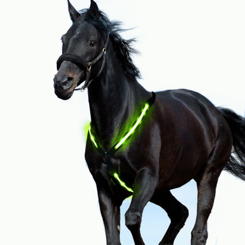 Nuovo design USB led cavallo corazza per gli accessori del cavallo