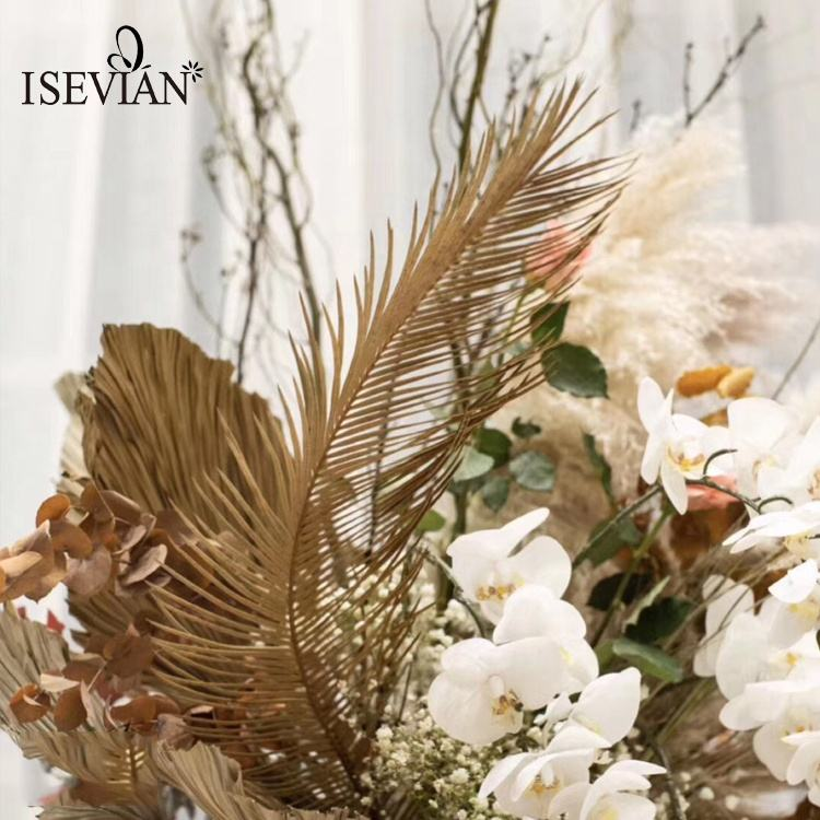 ISEVIAN Dried Palm Leaf Decor Large Long Dried palm frond