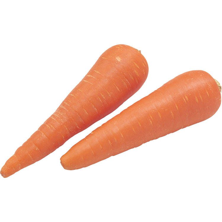 New Crop Fresh Chinese Carrot Red Healthy Carrots