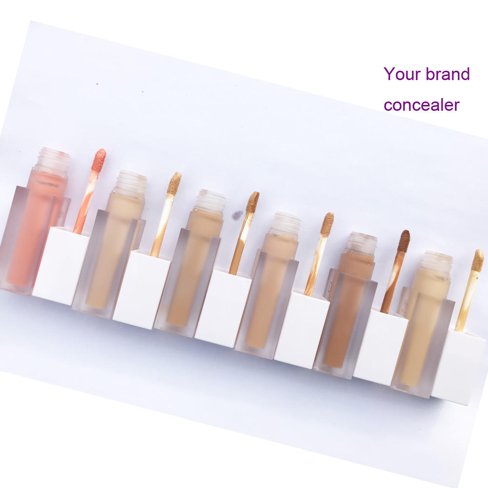 No Logo 6 Colors Liquid Concealer Waterproof Oil Control Private Label Concealer