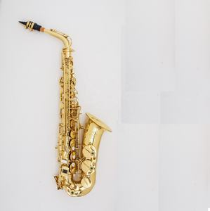 Good alto Saxophone easy play OEM