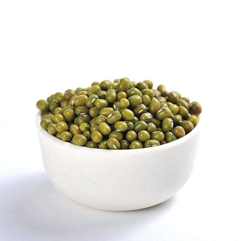 Chinese Specification Organic Wholesale Green Mung Bean for Sprouting