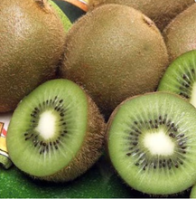 Wholesale Fresh Kiwi Fruits supplier