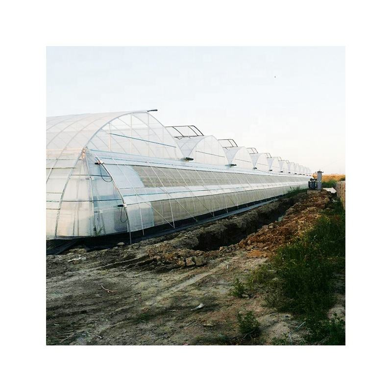 Factory price poly film greenhouse best sale PEP covering multi span green house agricultural tropical commercial greenhouse
