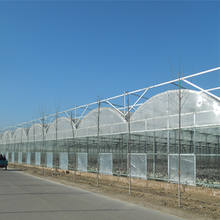 polycarbonate hydroponic greenhouse with growing system for vegetable