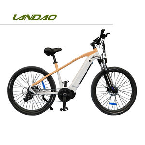 MINMAX electric bike mountain 1000 w bicycle mountain bike 48v classic removable battery moped mountainbike accessories ebike