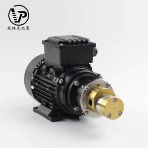 Kecil tekanan rendah single phase adjustable gear pump dengan Stainless steel gear bahan beredar pompa air