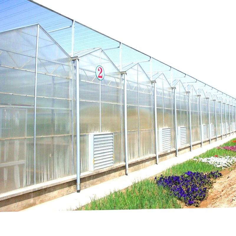 Muti-span Agricultural Greenhouses Sell Used Polycarbonate Greenhouses for vertical farming systems green house