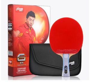 DHS R6002 Table Tennis Racket ( Hurricane 8 rubber & TinArc rubber)