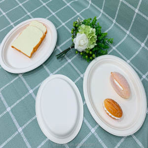 Sugarcane Paper Raw Material Compostable Food Plates