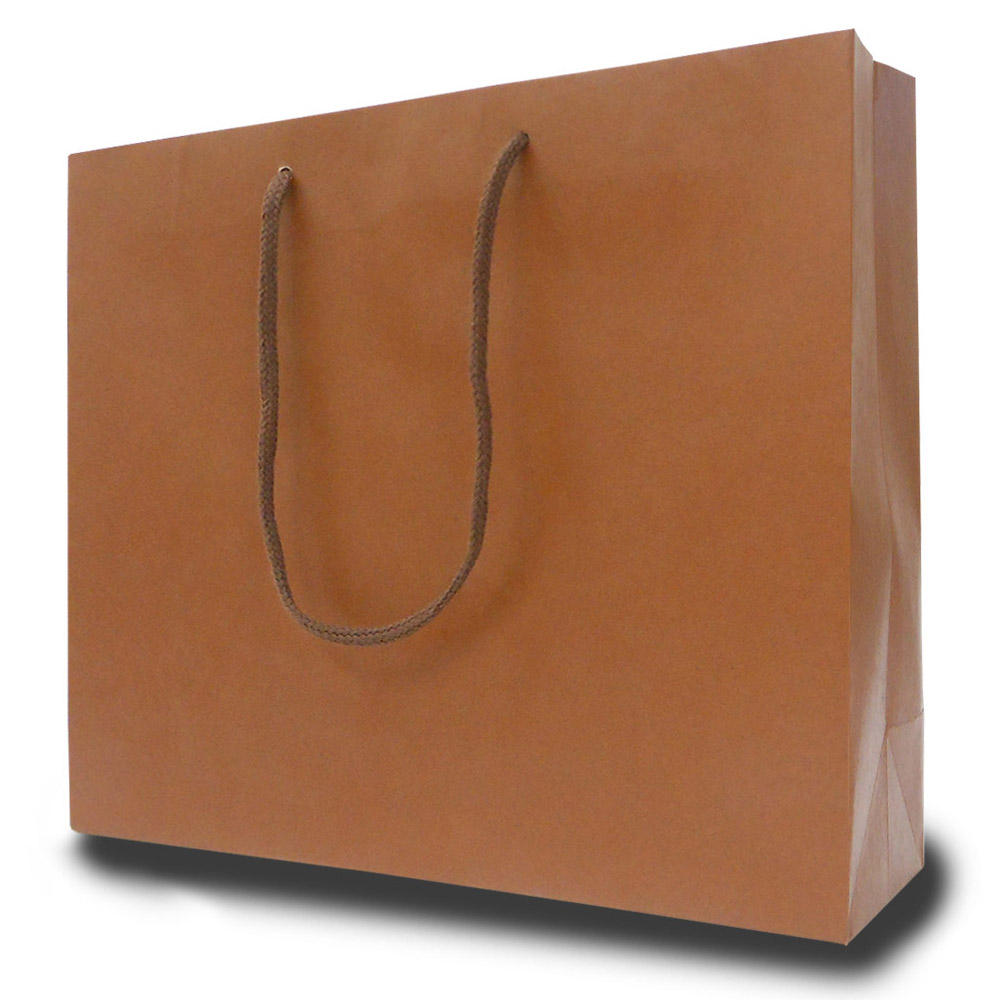 Hot Sale Shopping Gift Low Cost Paper Bag With Hand Length Handle