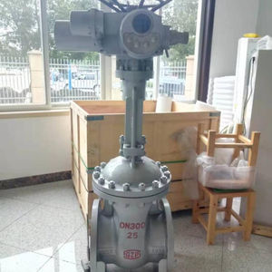 Gate valve,flange end,RF,PN25,DN300,WCB material,with electric actuator