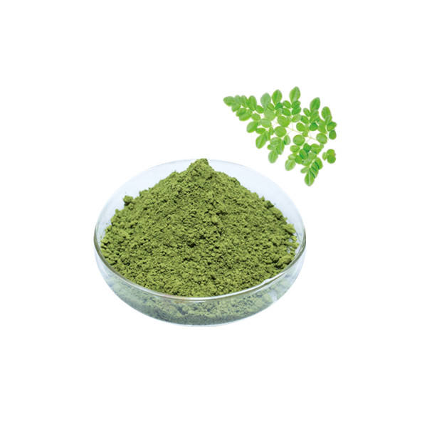 Fast delivery moringa leaf powder buyers in india moringa leaf powder bulk