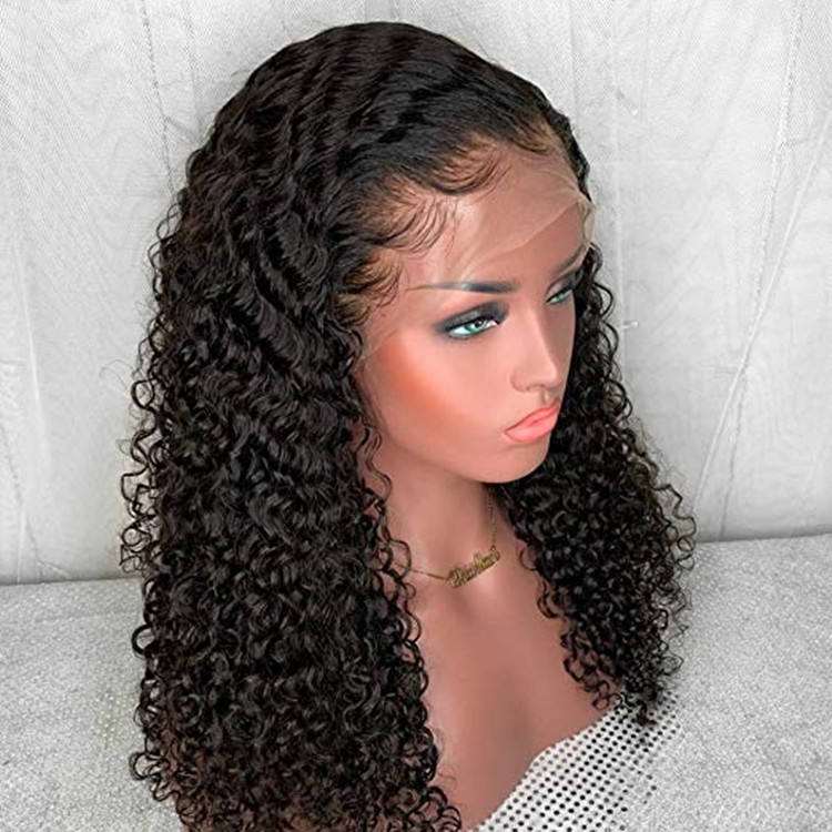 Premier Pre Plucked Hairline Curly Full Lace Mink Brazilian Hair Wig