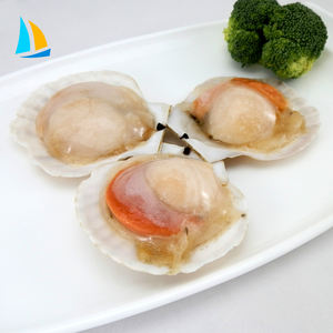 frozen Japanese scallop