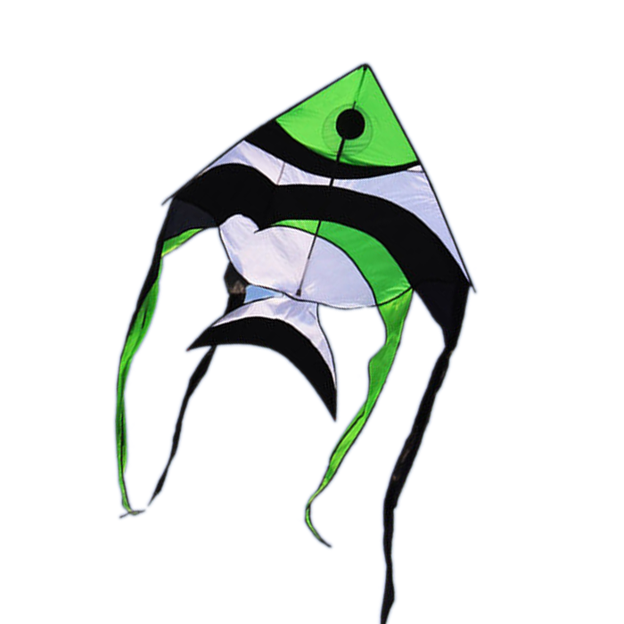 HengDa outdoor sport toy long tail fish animal kite