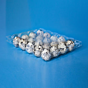 disposable plastic clear egg tray quail egg tray carton